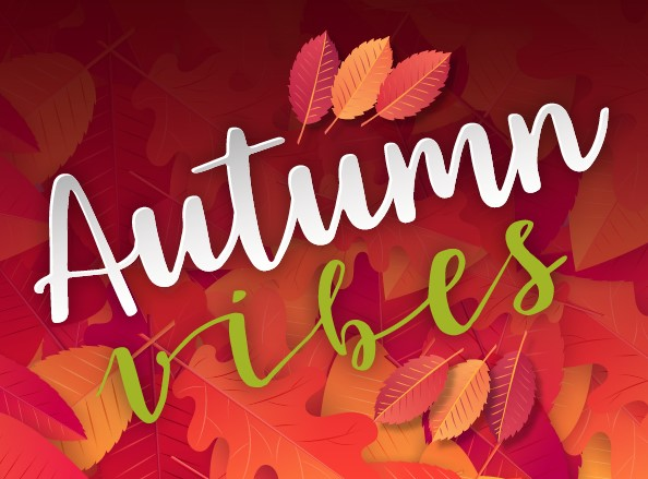 Enjoy the Autumn Vibe Offer Image