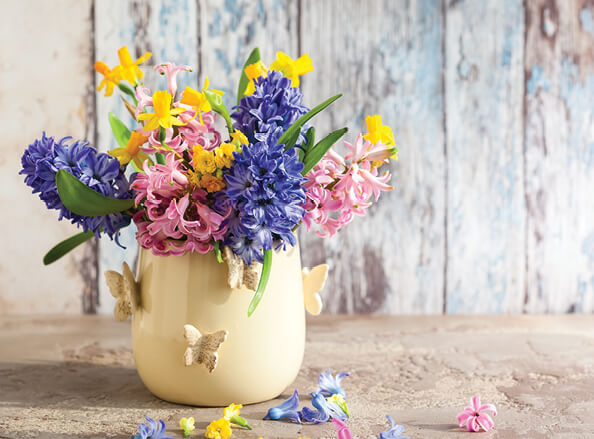 Mother's Day in Peterborough Offer Image