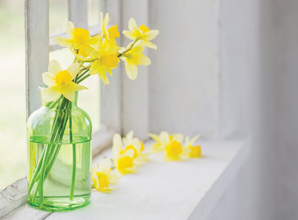 Spring Hotel Breaks on the Isle of Man Offer Image